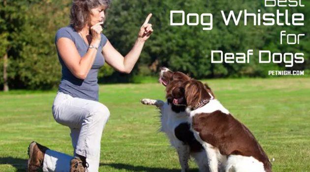 A photo describing the use of silent dog whistle