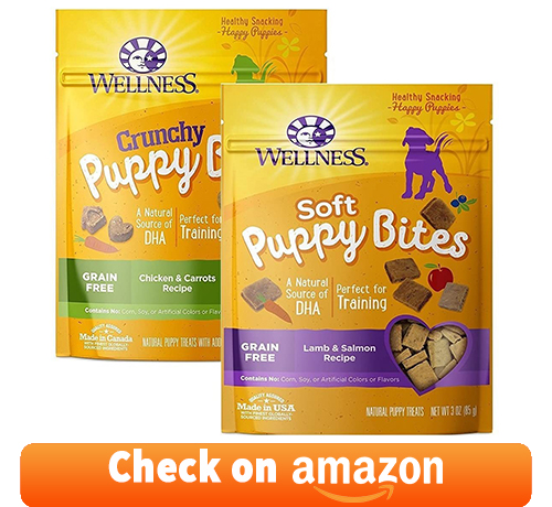 Two versatile wellness soft puppy bites recipe for pups