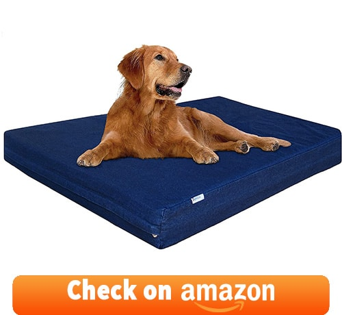 pet parents love to have this chew proof dog bed