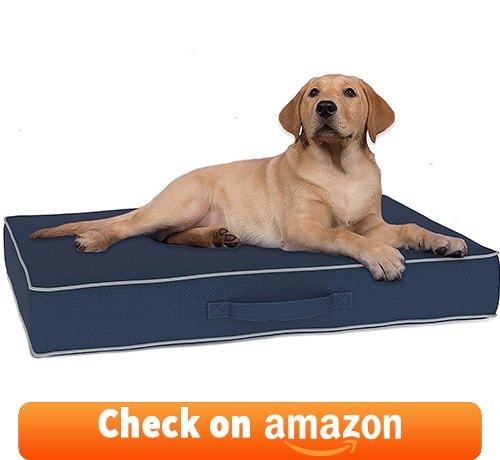 chew resistant bed that comes in large and extra-large sizes